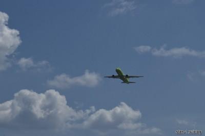 А-319 авиакомпании Сибирь