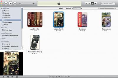 Перенос книги в iTunes
