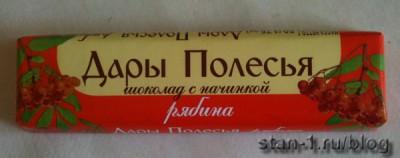 Шоколадка с рябиновой начинкой
